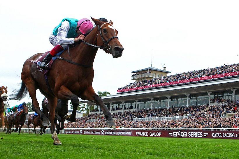 Qatar Prix de l'Arc de Triomphe, best 2017 horse race in the World! | France Galop