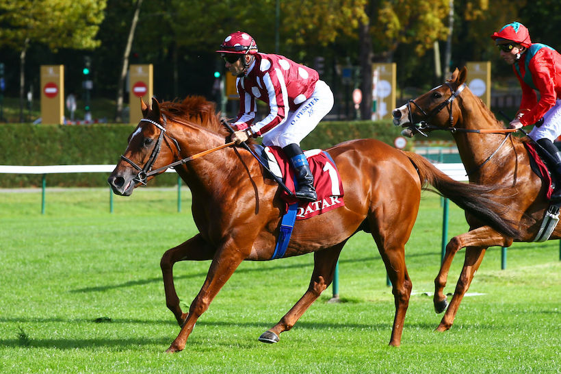 France Galop |